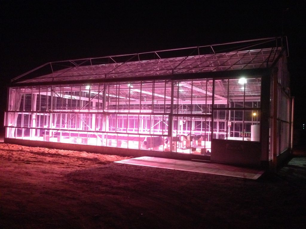 Valoya led grow lights optimised for plant production and research cersaa greenhouse italy valoya b series led grow lights arubaitofo Choice Image