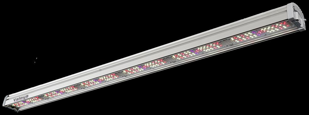 LightDNA 2-Channel LED Grow Light