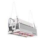 R Series Valoya LED Grow Light, shoebox light, rooftop lighting for greenhouses