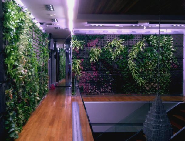 LED Grow Lights for Plant Walls - Singapore Airport
