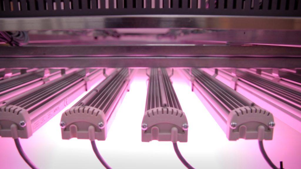 HPS to LED