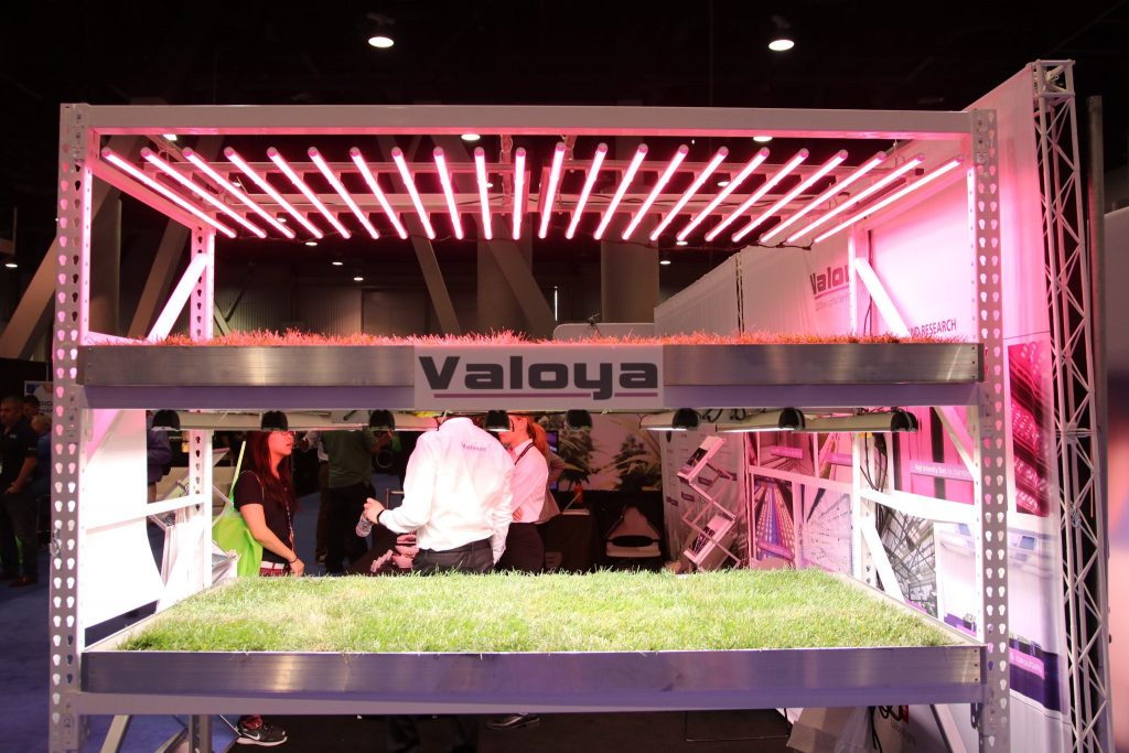 Valoya MJBizCon Las Vegas