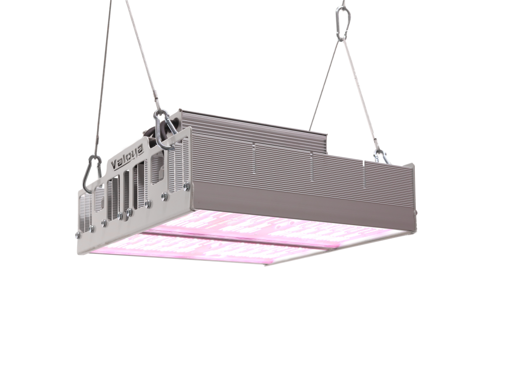 LED Grow Light for Greenhouses, HPS Replacement