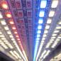 LightDNA-8-Channel-Light-LED-Chips-86x86