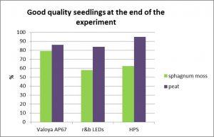 cloudberry seedlings Valoya AP67 LEDs HPS MTT