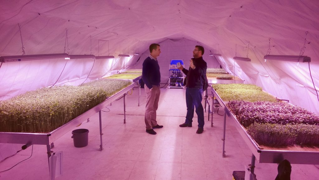 The Effect of LED Grow Lights on Human Health - Valoya LED