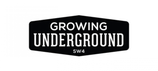 Growing Underground Valoya LED Grow Lights