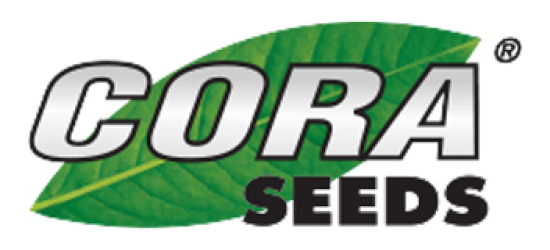 Cora Seeds Valoya LED Grow Lights