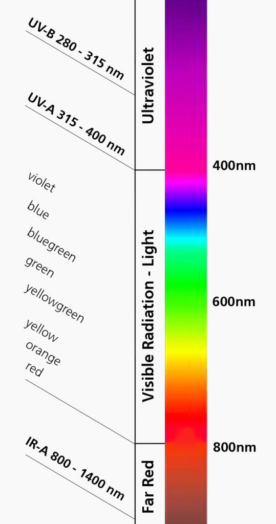Electromagnetic Radiation Visible Light LED Grow Lights