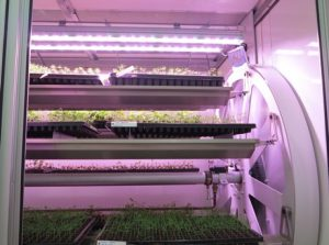 Valoya Has One of the Largest Patent Portfolios of the Horticultural Lighting Industry valoy3_hortidaily_2014-300x223