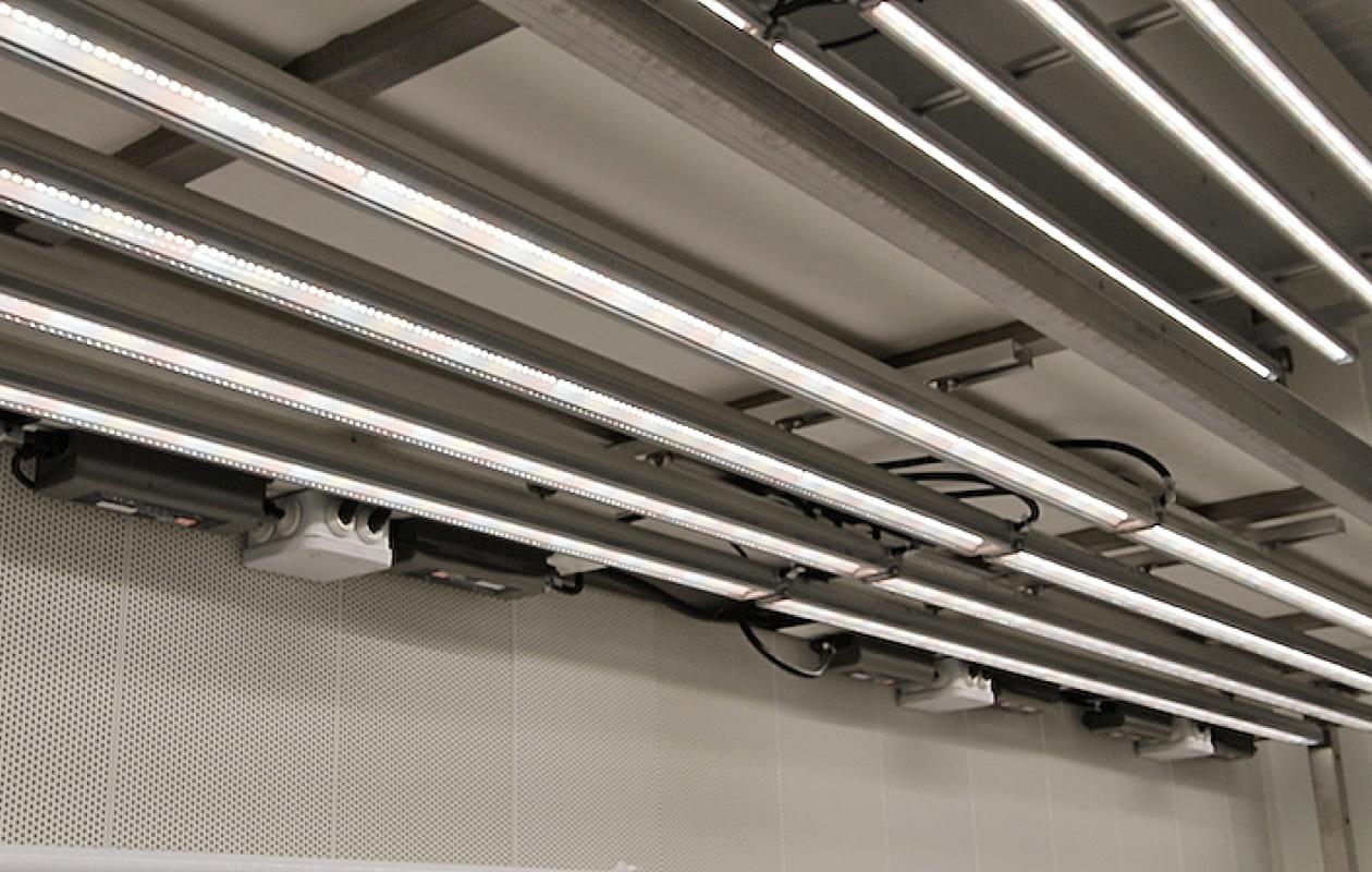 Valoya LED New C-Series3