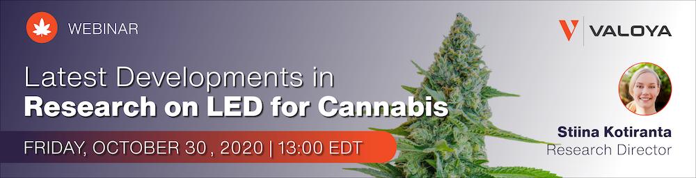 Cannabis LED webinar